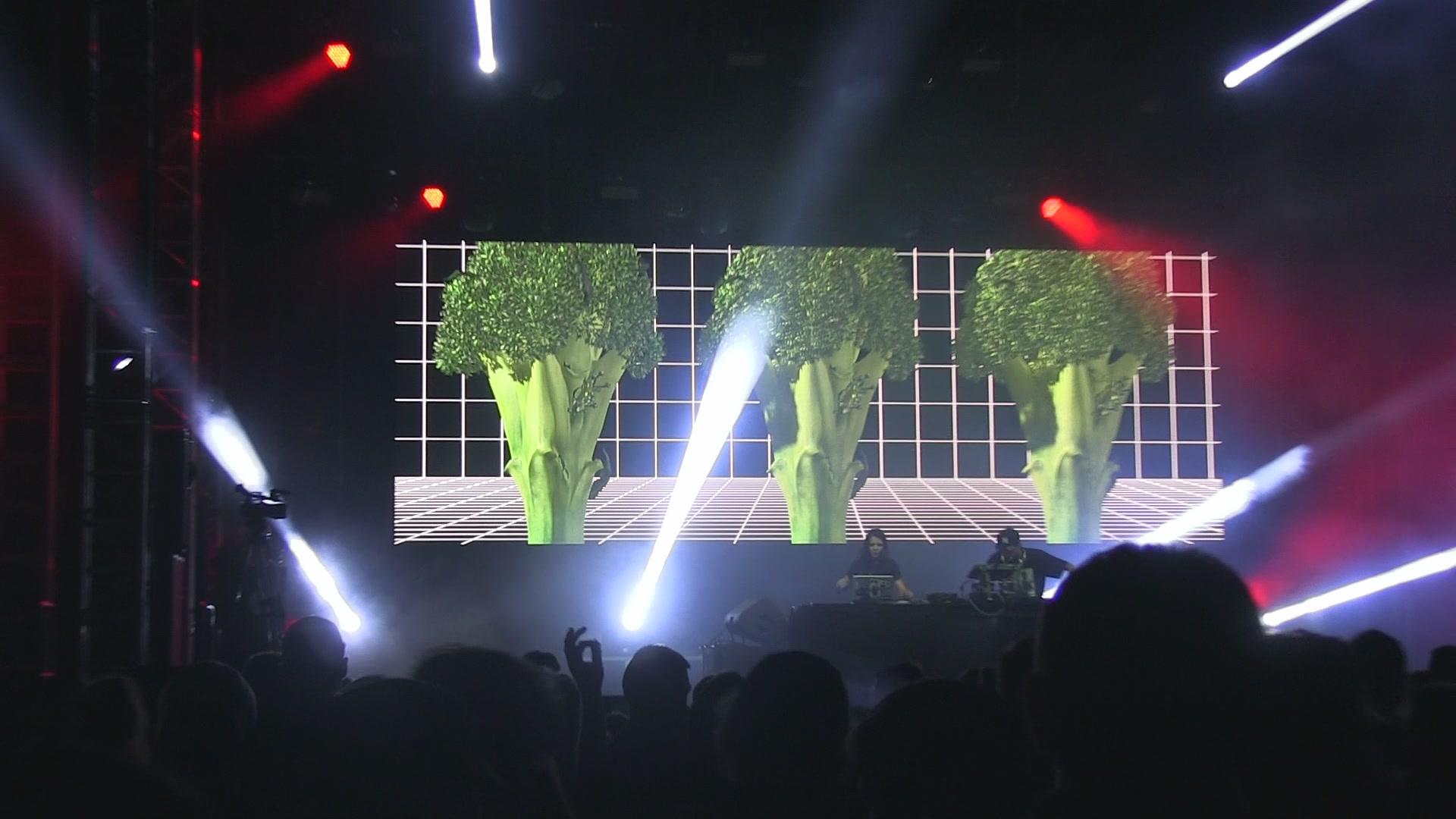 dk_2018_brokolice.jpg